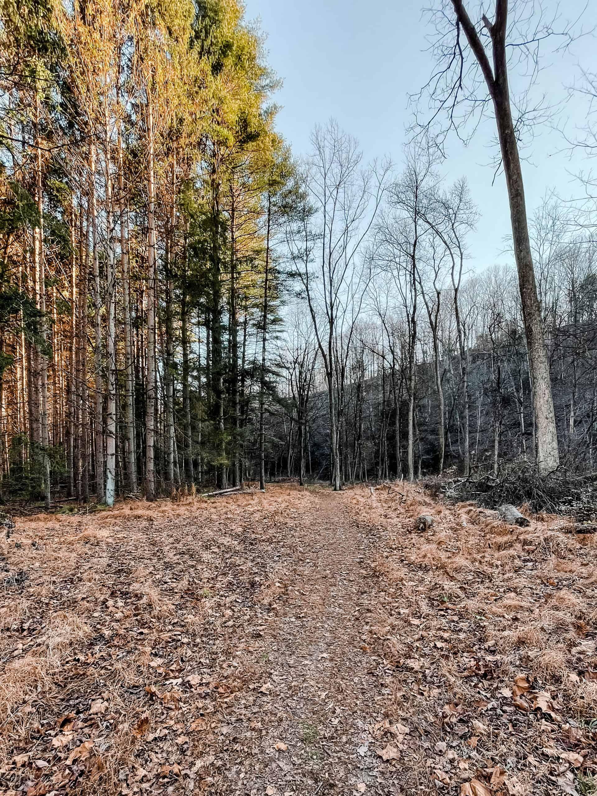 Getaway House Trail